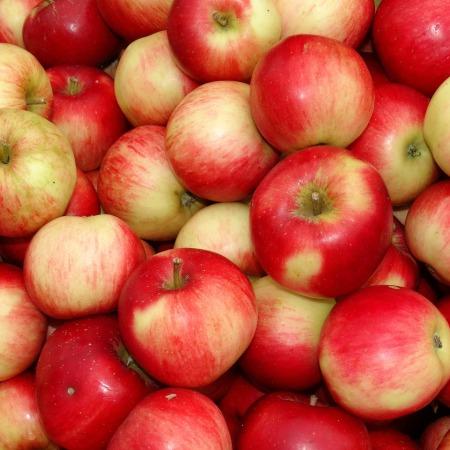 Äpfel am Vorgartenmarkt